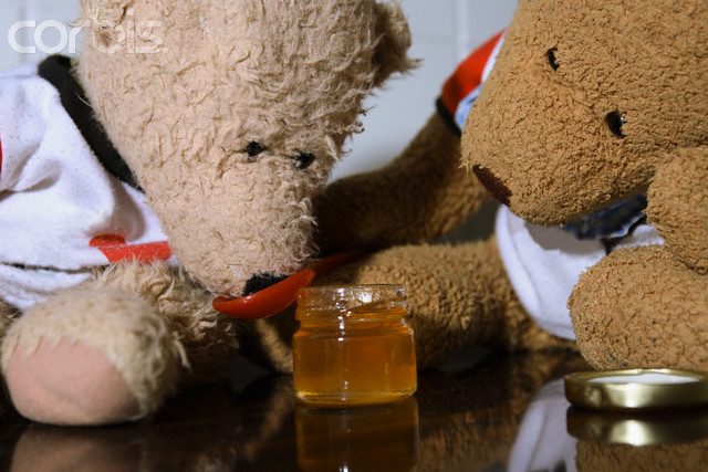 Teddy Bears Eating Honey