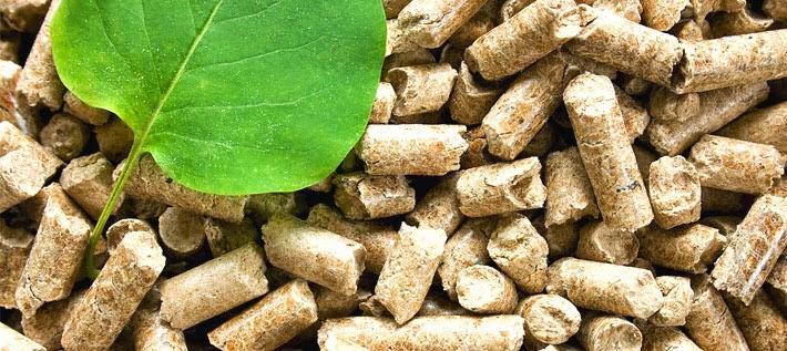calderes-biomassa
