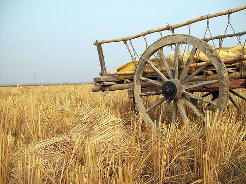 fotka za poljoprivredu
