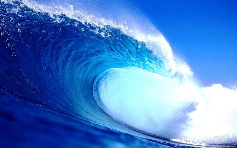 okean-11