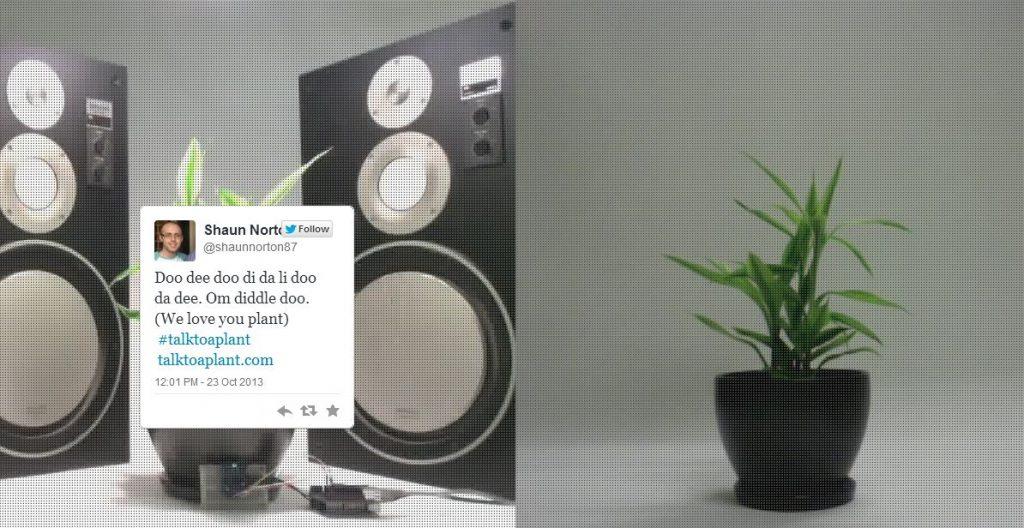 biljka i pricanje