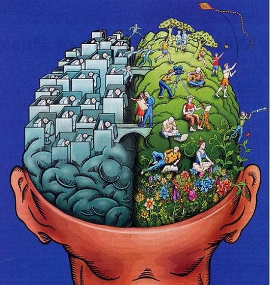 internet i mozak