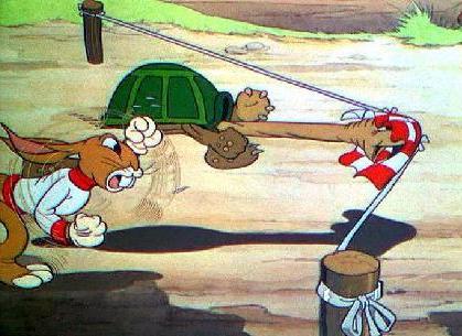 kornjaca i zec