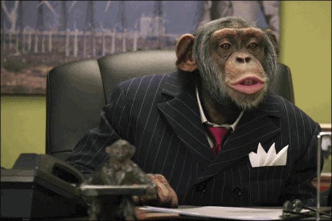 majmuniuvod