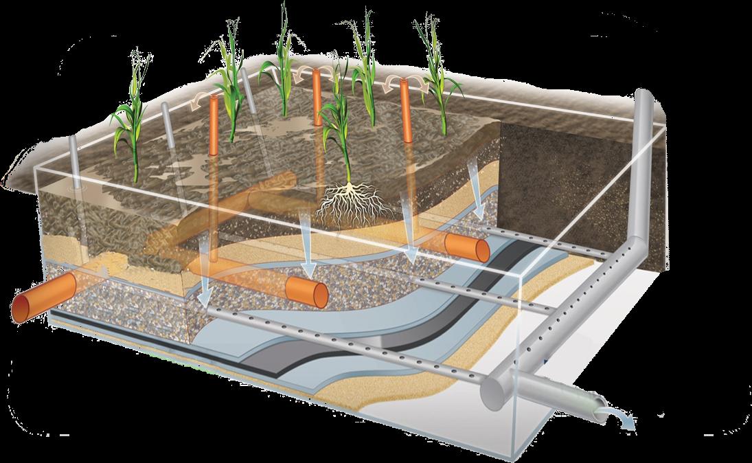 polja za dehidrataciju otpadnog mulja