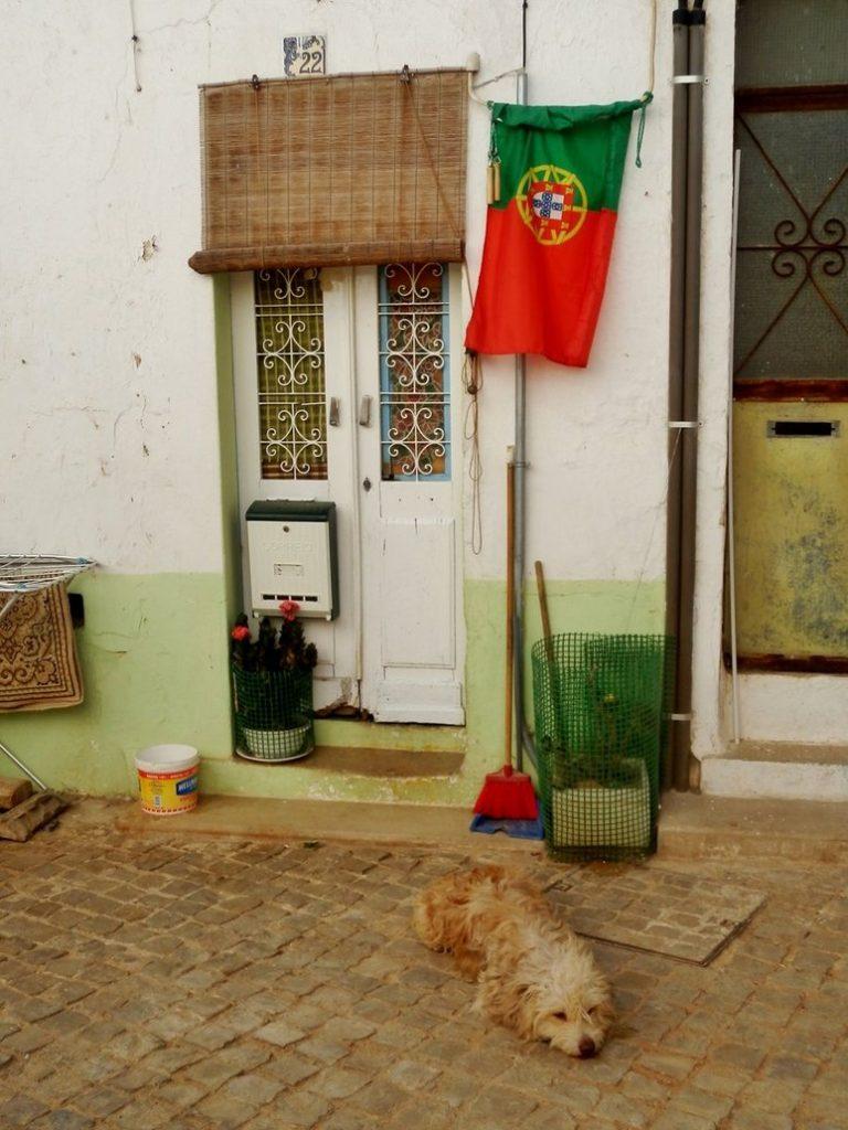 portugal lazy