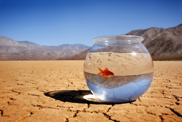 promene klima