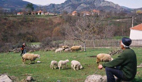 serbian village